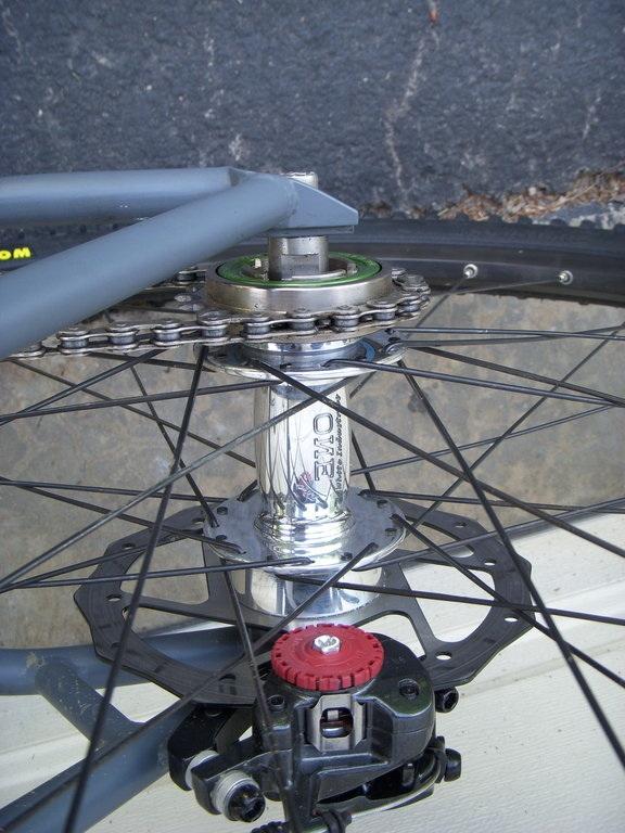 cheap-ish SS specific rear hub (cassette)-rear%2520wheel.jpg