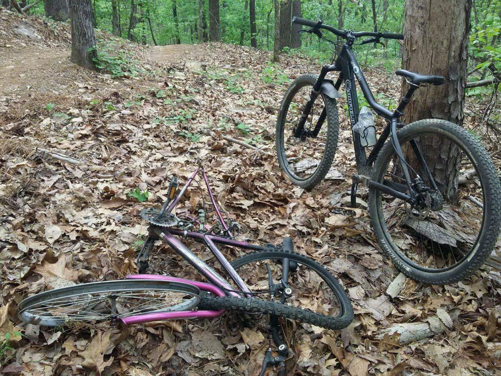 how to convert my hybrid to a ok trail bike-received_10212290694765572.jpg