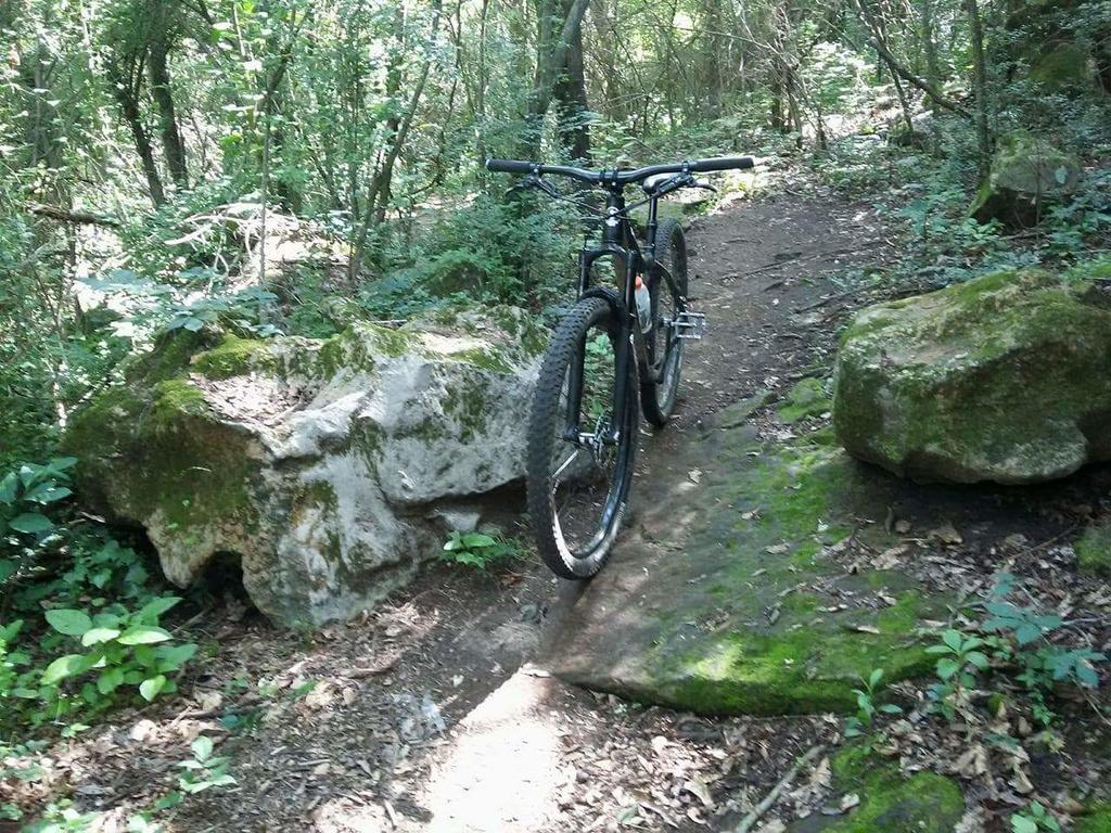 did you ride today?-received_10212775102195455.jpg