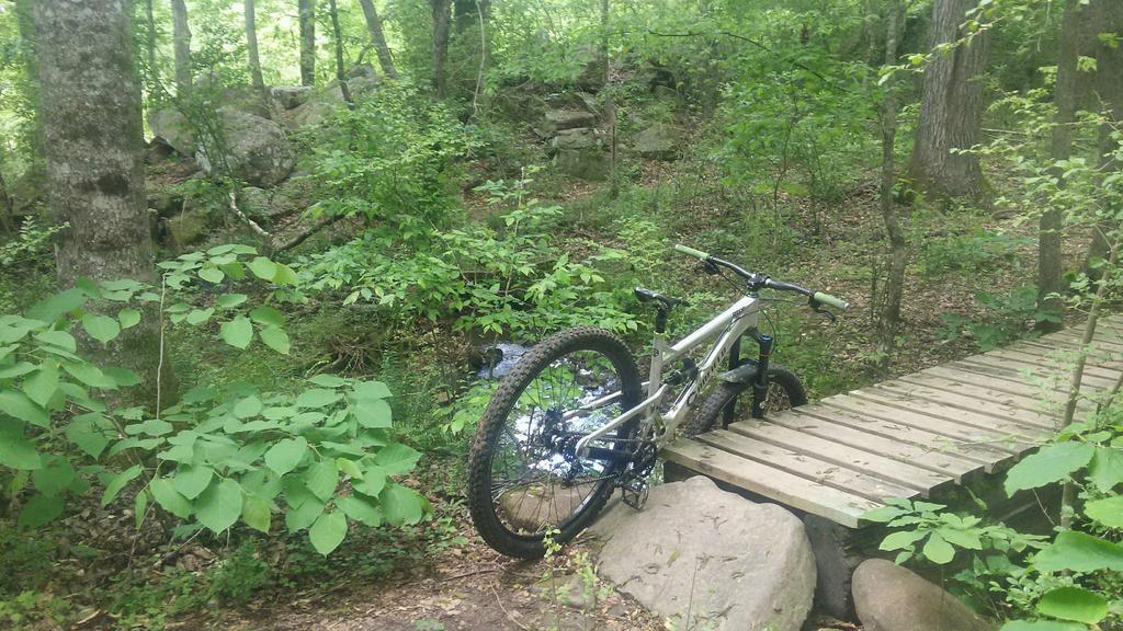 bike +  bridge pics-received_10215524990940955.jpg