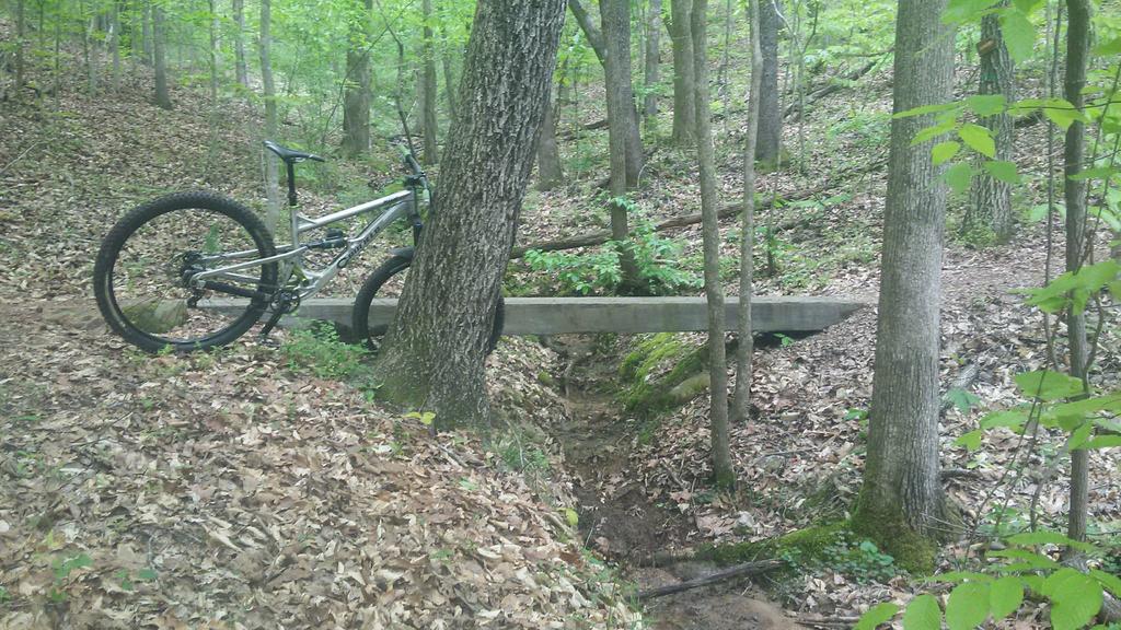 bike +  bridge pics-received_10215524992700999.jpg