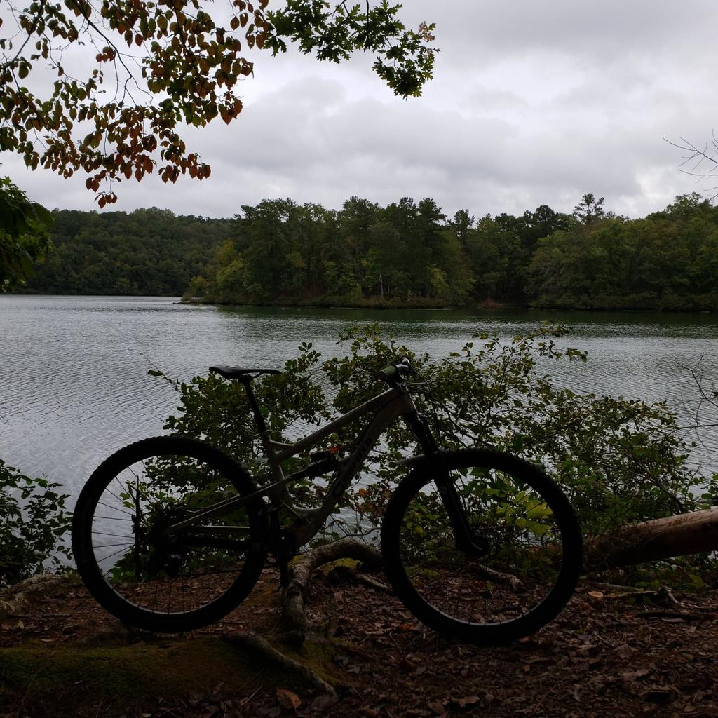 did you ride today?-received_547595685711193.jpg