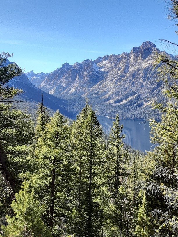Stanley/Sawtooth/Whitecloud/SunValley Information Thread!-redfish-canyon.jpg