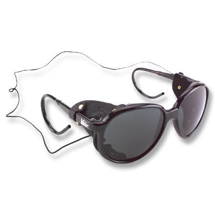 Name:  REI-glacier-glasses.jpg Views: 244 Size:  13.4 KB