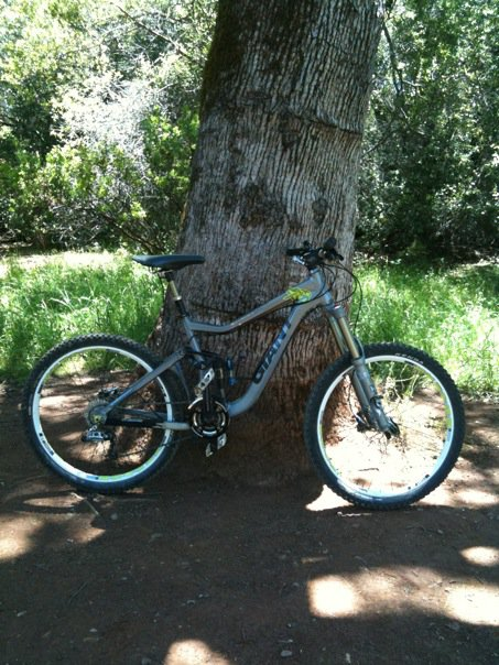 Just did my first downhill session!-reignx.jpg