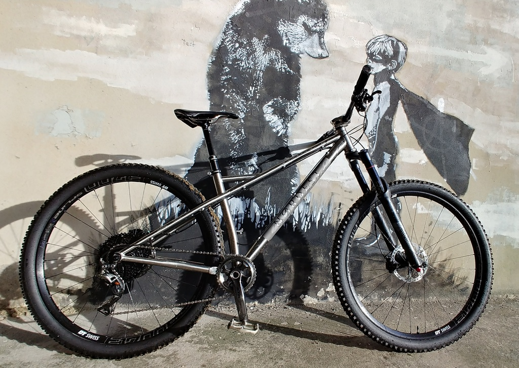 The All Mountain Hardtail Thread. Post up yours.-rejaxrz.jpg