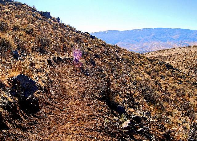 Reno trailwork day....-reno-nv-trail-crew-work-day.jpg