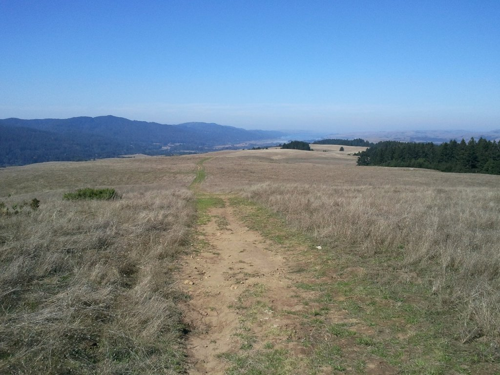 Summer riding in Marin-resize-tomales-bolinas-ridge.03.jpg