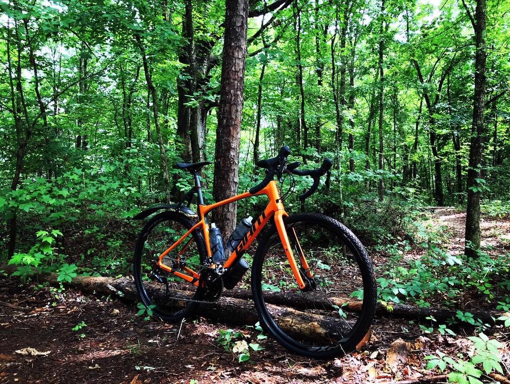 Post Your Gravel Bike Pictures-revolt2.jpg