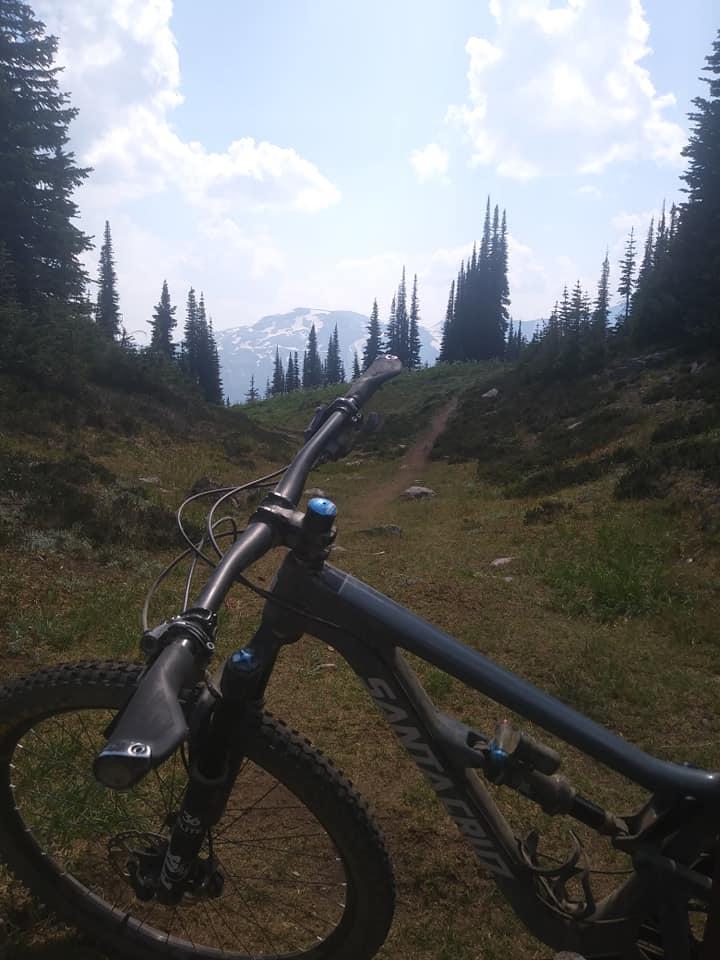 August = Alpine-revy3.jpg