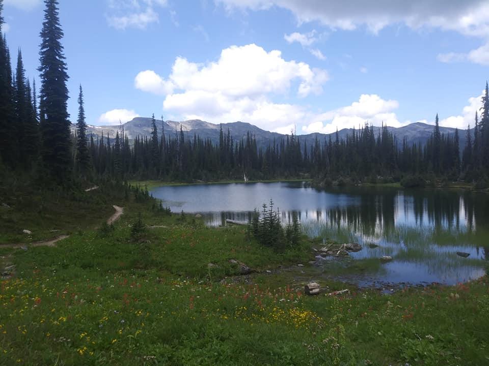 August = Alpine-revy5.jpg