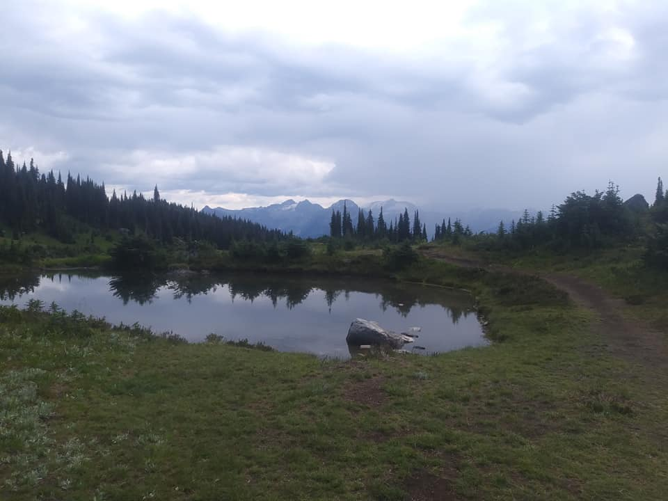 August = Alpine-revy7.jpg