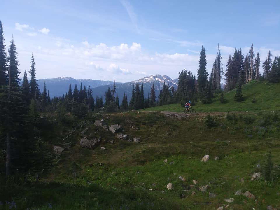 August = Alpine-revy8.jpg