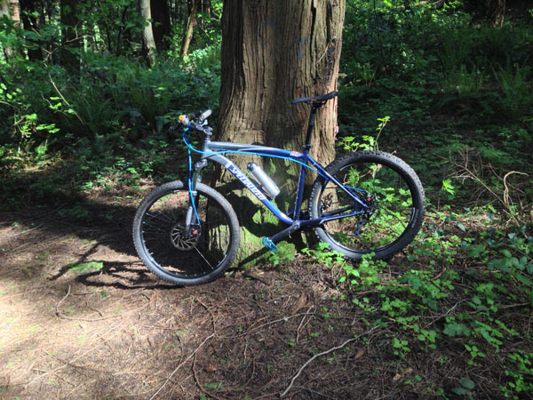 The All Mountain Hardtail Thread. Post up yours.-rh.jpg