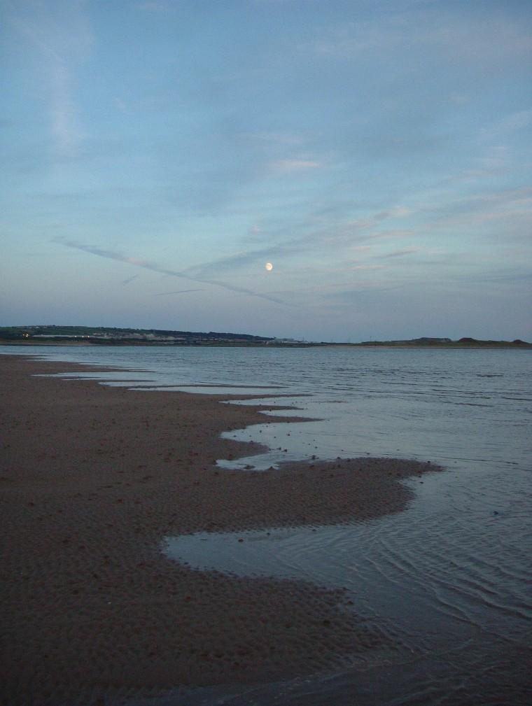 Beach/Sand riding picture thread.-rhbbp10.jpg