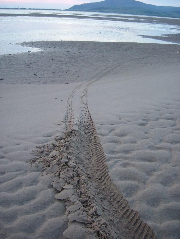 Beach/Sand riding picture thread.-rhbbp9.jpg