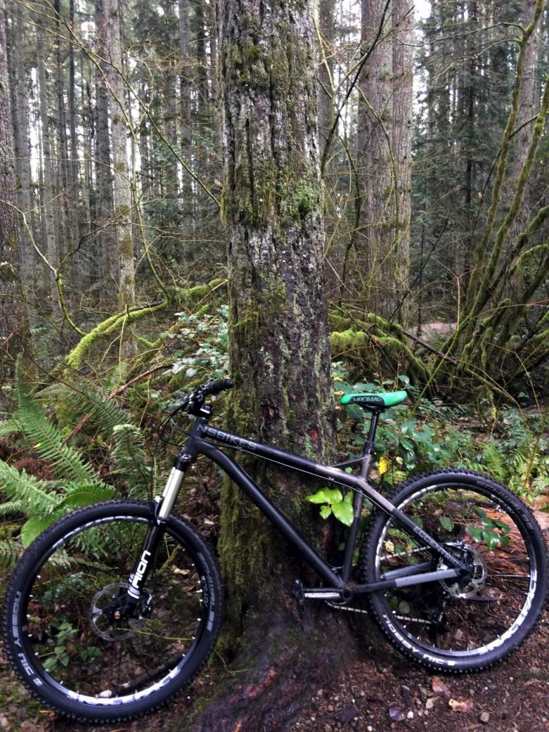 The All Mountain Hardtail Thread. Post up yours.-ride.jpg