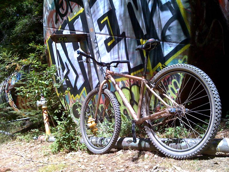 Anyone ride a fixie 29er?-ride3.jpg