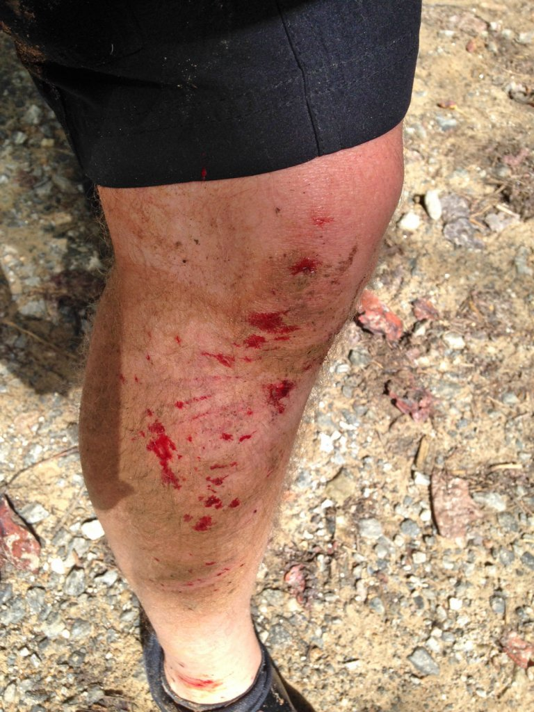 What did You do today on your mountain bike?-ride5.jpg