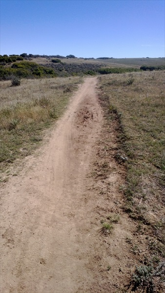 Trail PSA - trailgina-ridge-oct_001.jpg