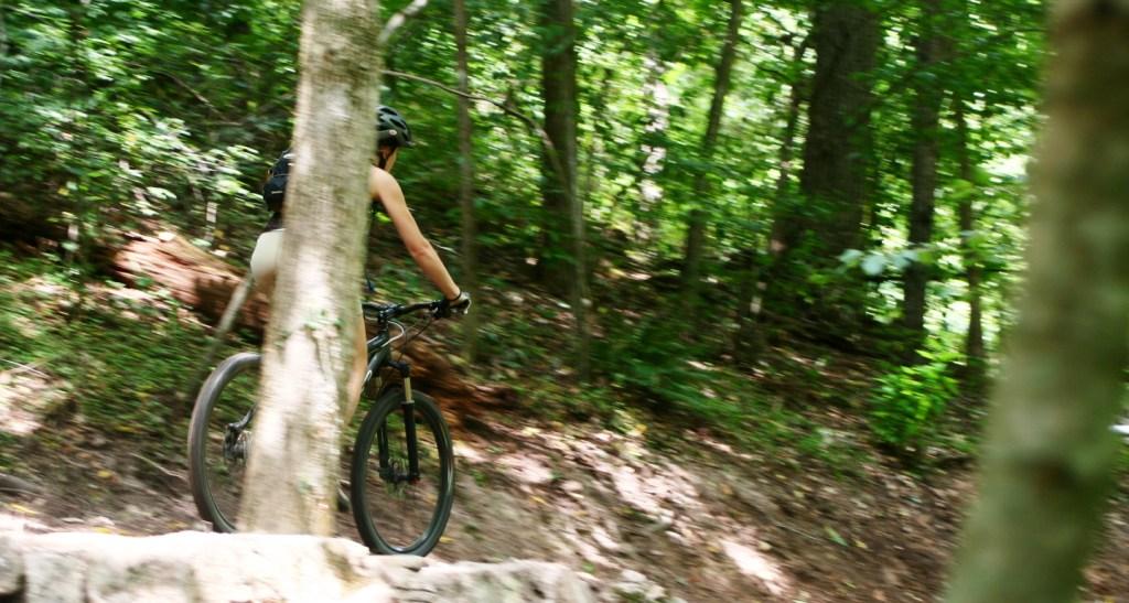 Piqchur Thursday-riding-139.jpg