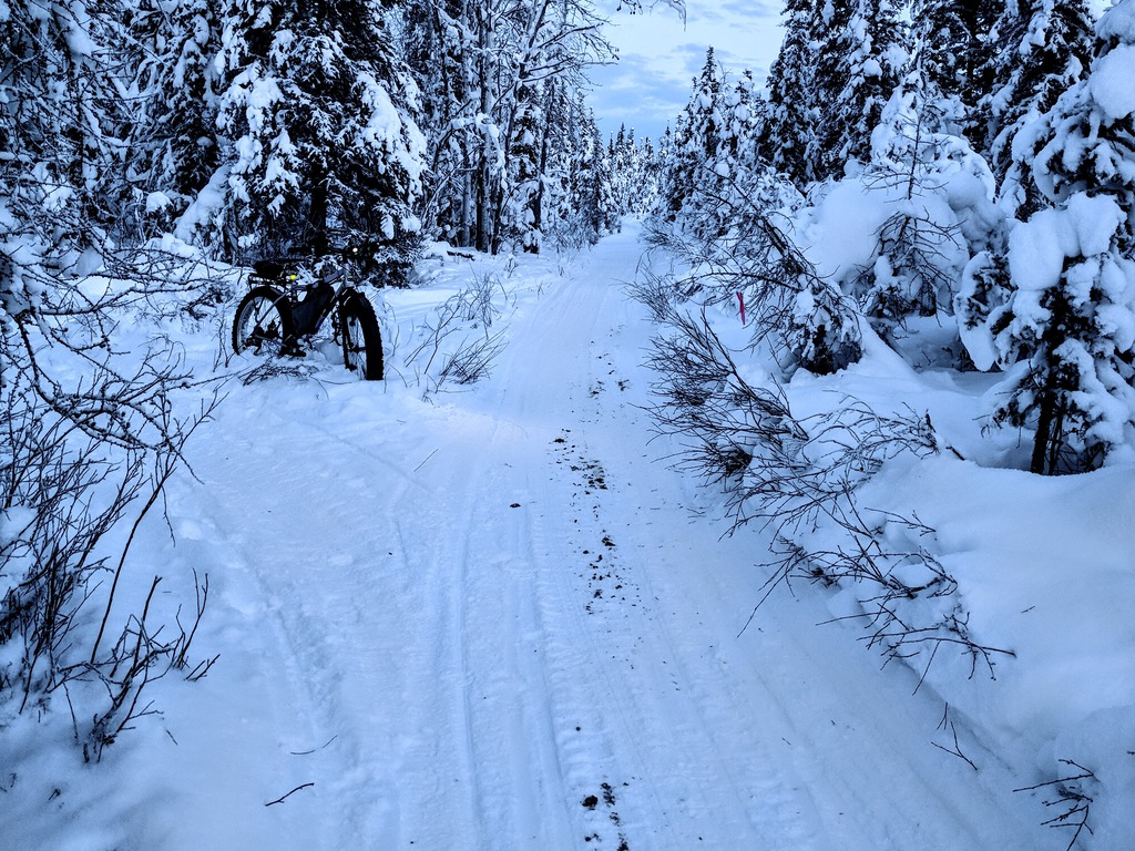 Daily fatbike pic thread-riding-shared-mushing-trails.jpg