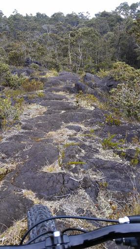 Name:  Riding over pahoehoe.jpg Views: 1327 Size:  80.6 KB