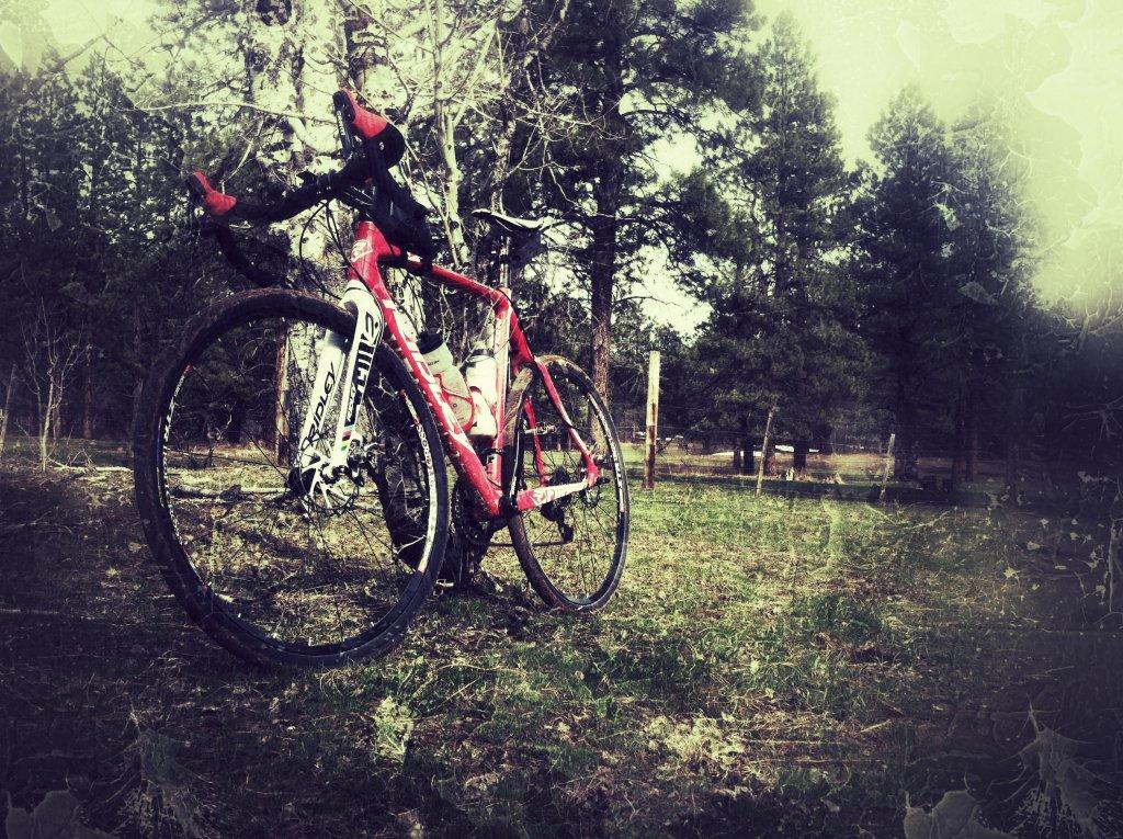 New Gravel Grinding Bike-ridley.jpg