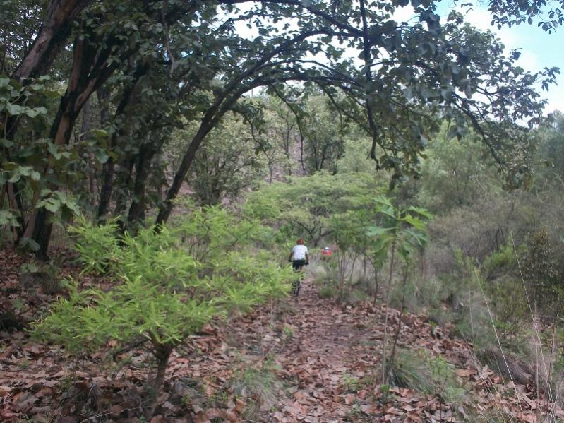 Ruta Rio Caliente-rio-caliente-043-800x600-.jpg