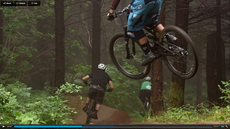 2015 Canfield Brothers Riot 29er FS-riot-teaser.jpg