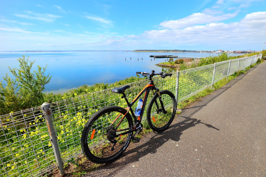 Post Pictures of your 29er-rippleside-sml.jpg