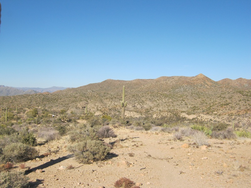 AZ Photo Friday - Jan 25th-ripsey-background.jpg