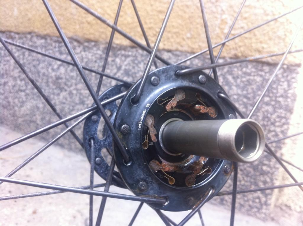 Any more information on the WCS TRAIL 29 wheelsets-ritchey-hub.jpg