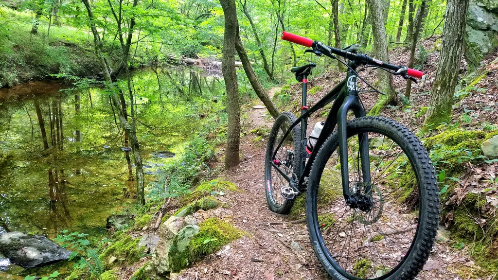 """The """"New"""" Post Your Singlespeed!-river.jpg"""