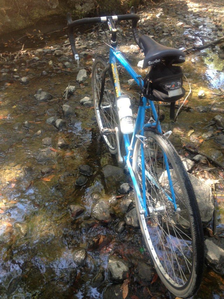 Trail Pics-rlst.jpg
