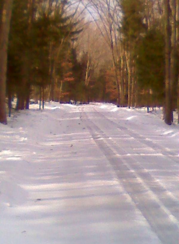 Any Trails Rideable-roaring-creek.jpg