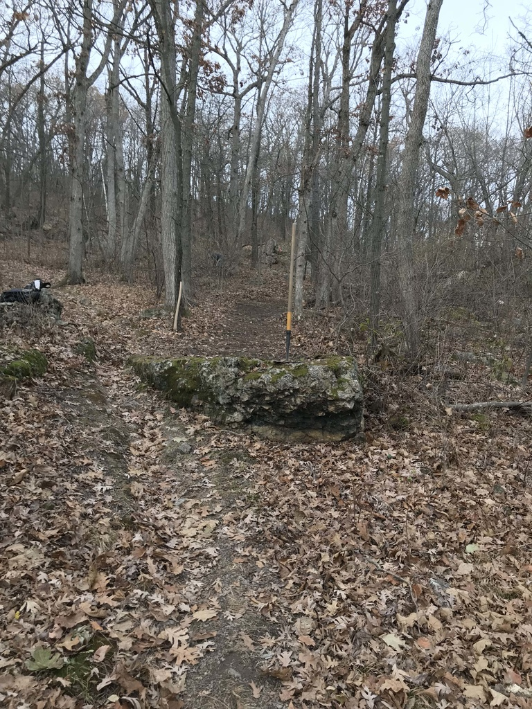 Show a Pic of Your In-process / Recently Finished Trail-rock-drop-home-stretch.jpg