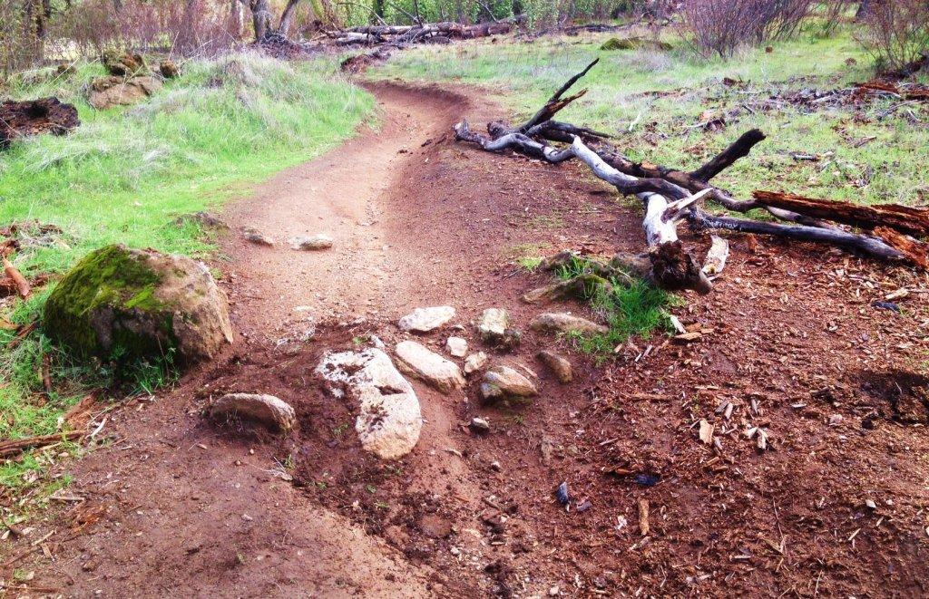Dyke 8/ Browns Ravine Rock Garden Feud-rock2.jpg