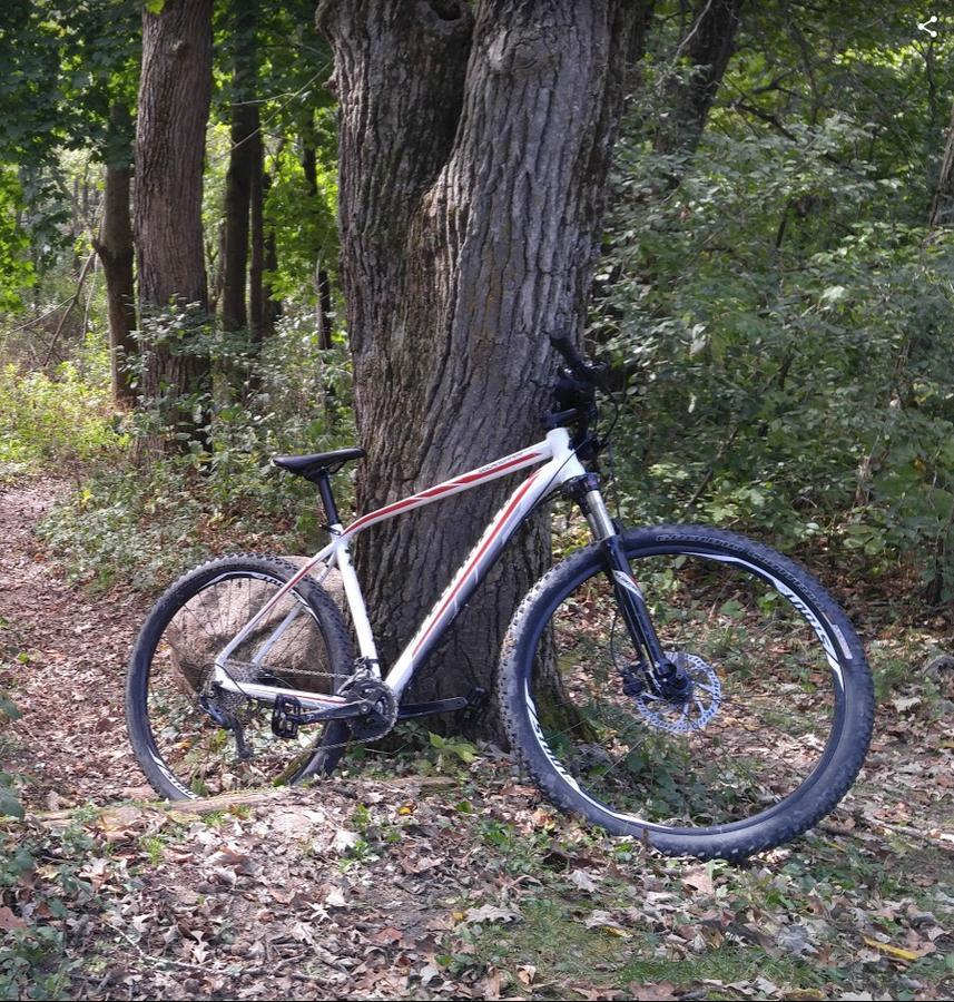 Post Pictures of your 29er-rockhopper2.jpg