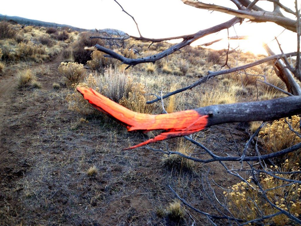 Flourescent Orange and Pink painted rocks at Horse Butte-rocks14.jpg