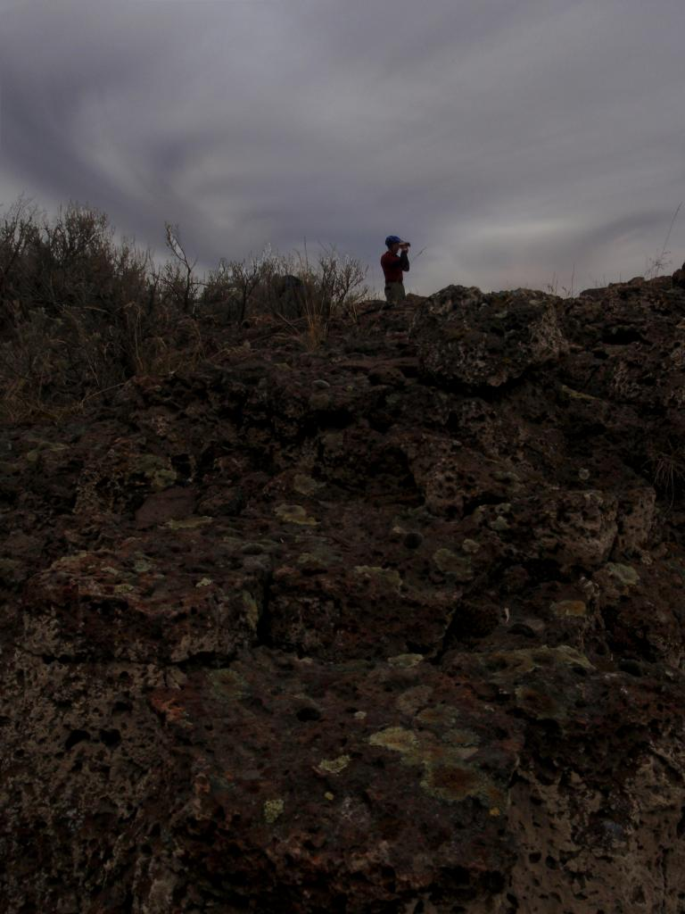 shiggy on the rocks!-rocks2.jpg