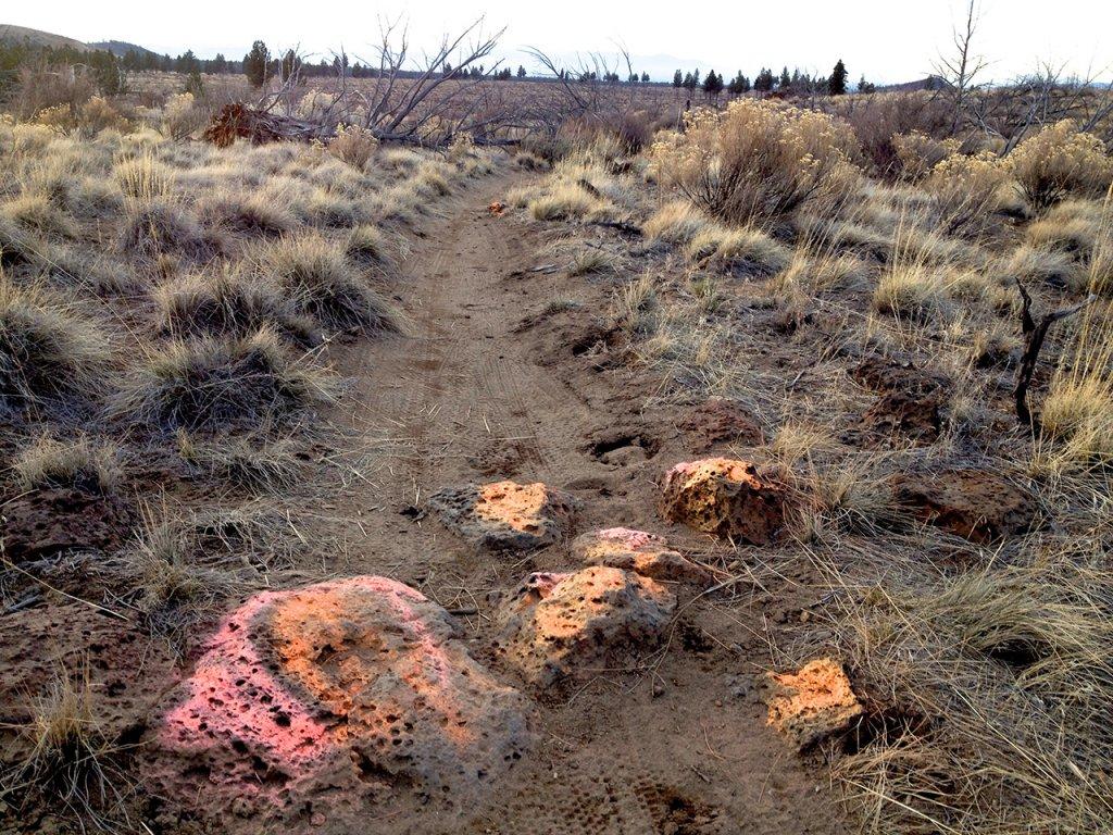 Flourescent Orange and Pink painted rocks at Horse Butte-rocks25.jpg