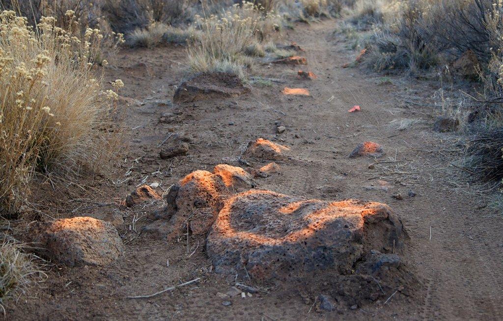 Flourescent Orange and Pink painted rocks at Horse Butte-rocks7.jpg