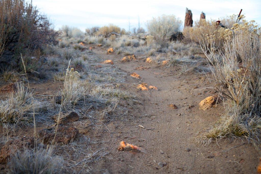 Flourescent Orange and Pink painted rocks at Horse Butte-rocks9.jpg