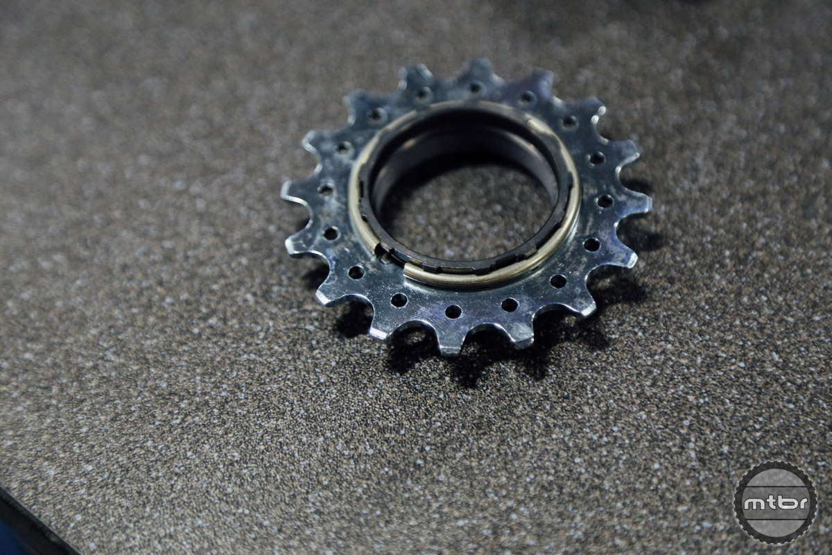 The Rohloff sprockets are designed to work best with derailleur chains. While single speeds are strong and cheap, they're don't last as long.
