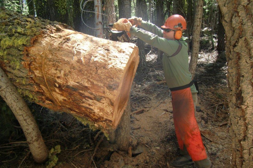 Mills Peak Trail Expansion Plans-ronski.jpg