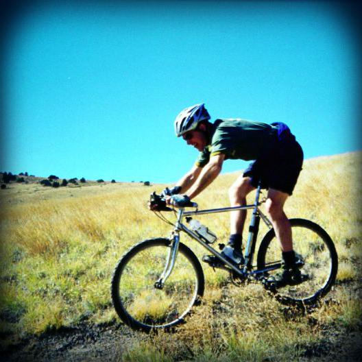 Late 1980's Ross Mt. Bike Models - differences-rossmtwhitney.jpg