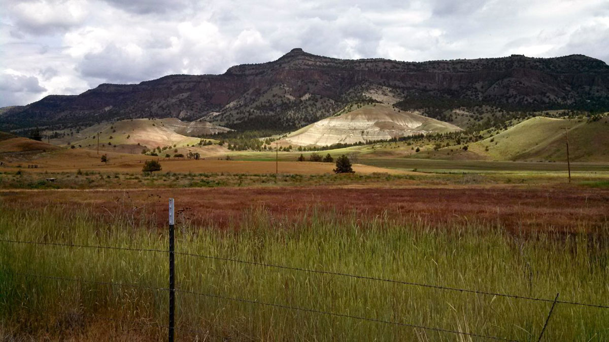 The palate of colors along Rowe Creek Road is stunning, especially on an overcast day.