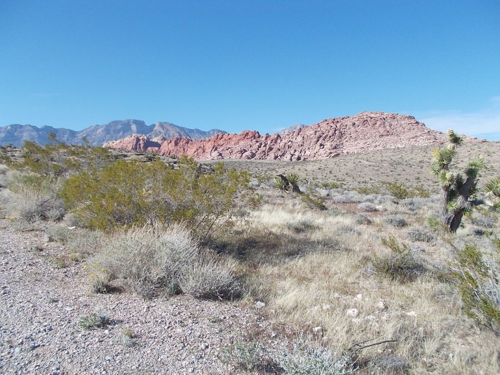 What an amazing weekend at Red Rock Canyon-rr1.jpg