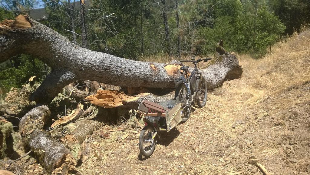 E-Bikes As Utility Trail Work Vehicle-rswp_20170703_017.jpg